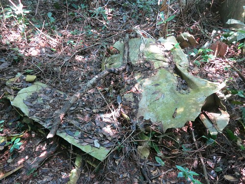a first bit of wreckage