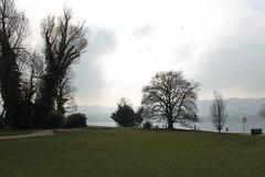 Lake Zurich , Zürisee, Zürichsee