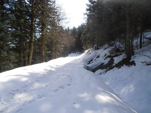 Col de Marie Blanque 137