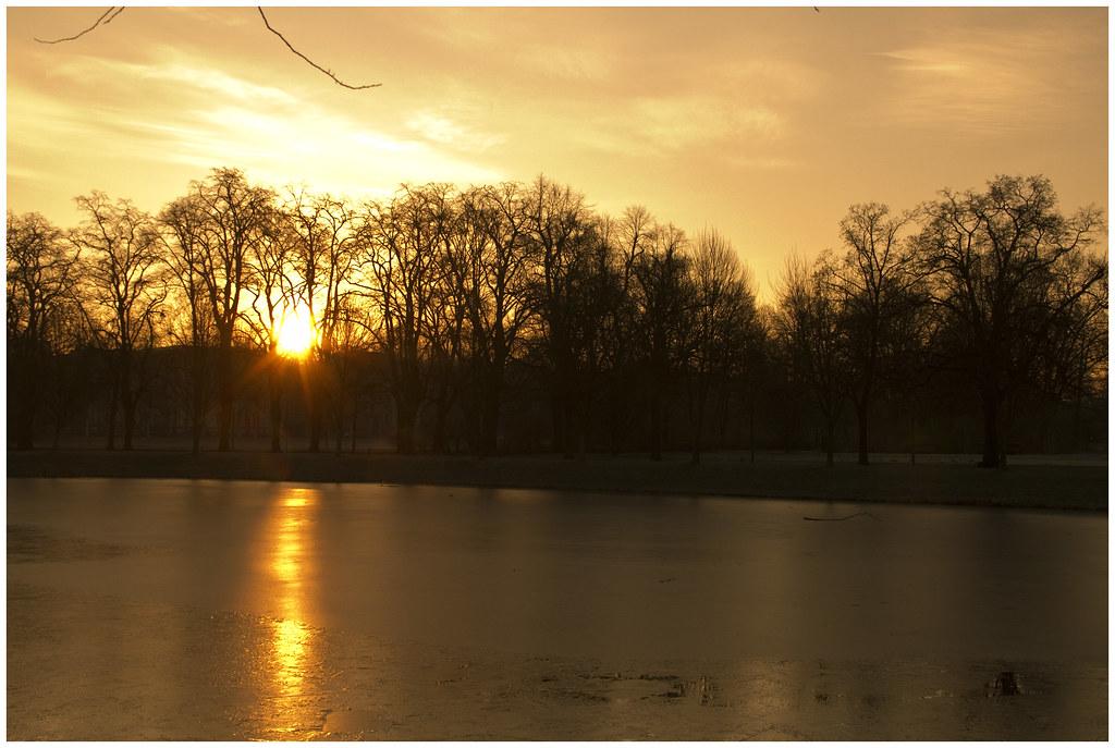 Sun It Rises