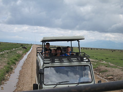 8545509658 f259e3acea m Everything was amazing, professional and fun! Thomson Family Safari Review: Kristin