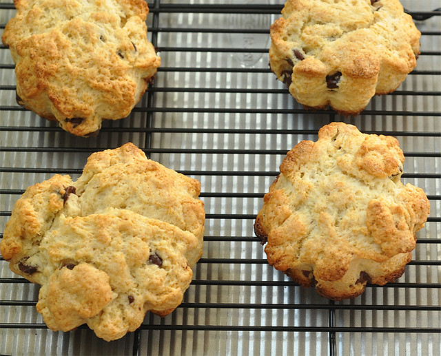Cream Scones with Chocolate