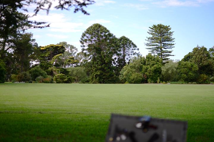 6 picnic view