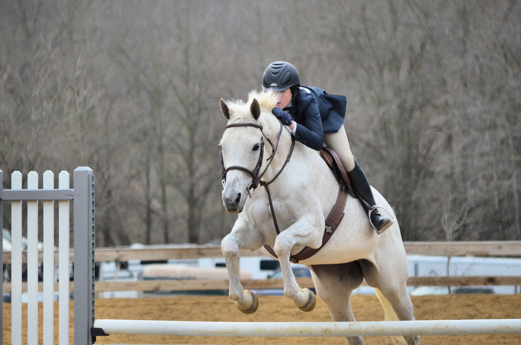 Quot Horse Shows Quot Primarily Pg County Equestrian Center Upper