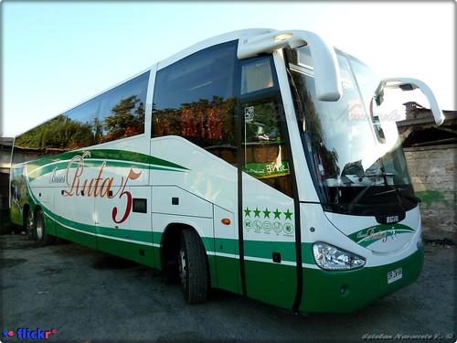 Buses Ruta 5.-