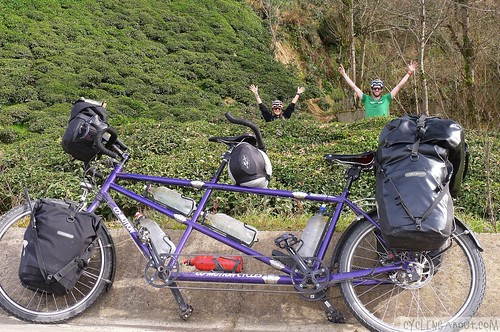 Bicycle touring tandem bike tea plantation
