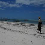 Imagine de Dream Bay Plaja cu o lungime de 433 m.
