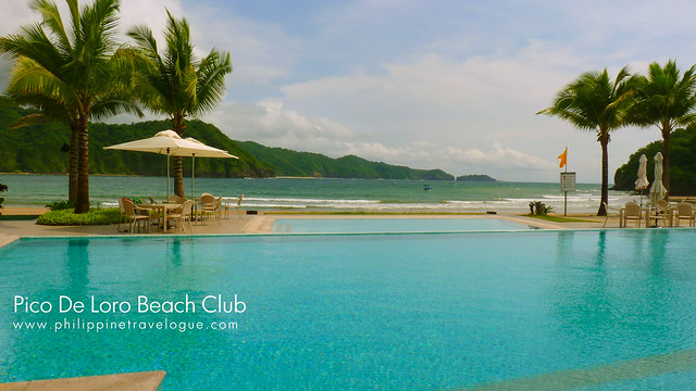 pico de loro beach club