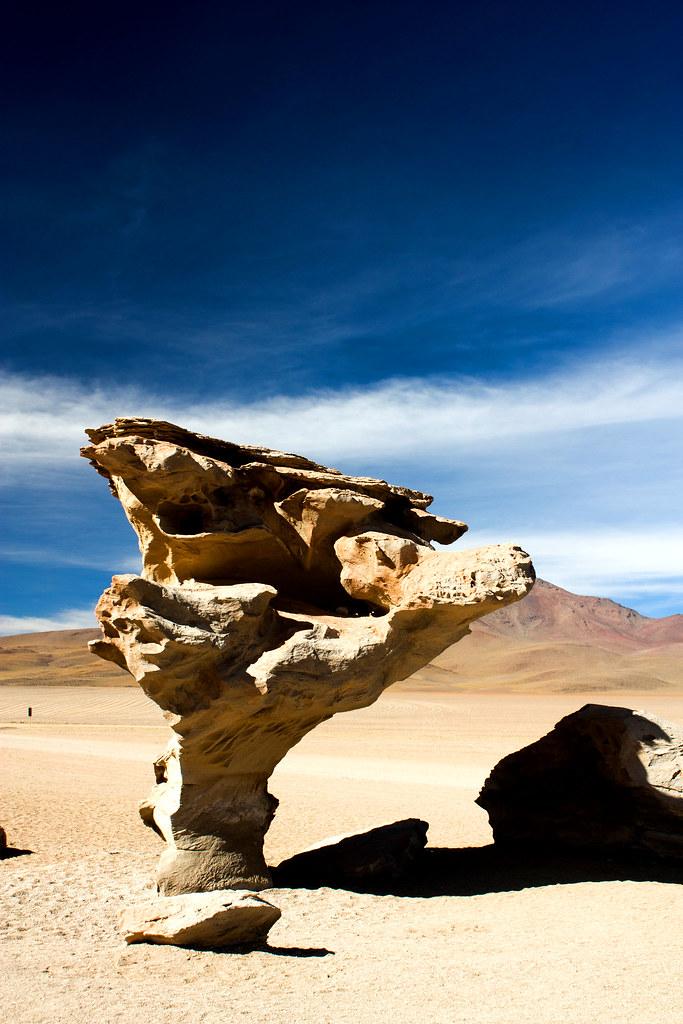 El Arbol de Piedra.