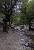 Kreta 2011-1 331