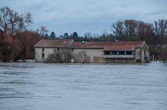 La Moselle - Ferme et moulin inondés
