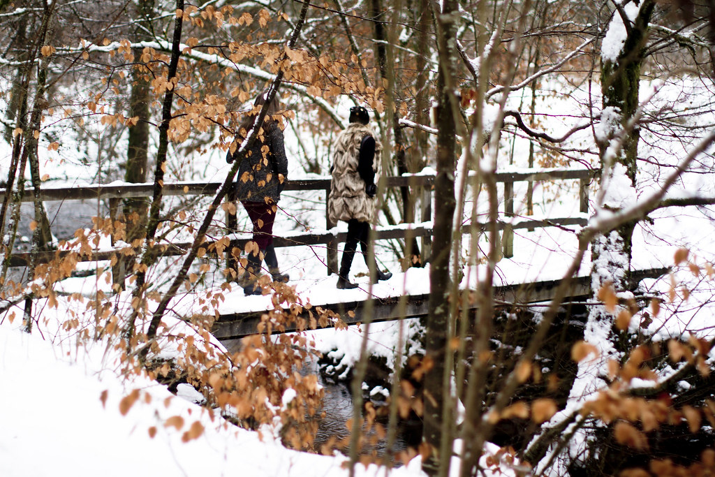 bridge over the river in the snowy woods 1