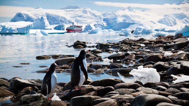 La Antártida: La belleza del reino del hielo. Continente Antártico. Polo Sur