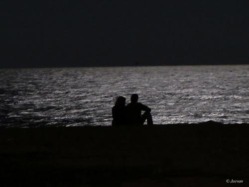Romance under moonlit