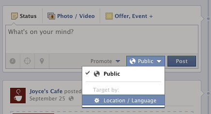 Limit your Post's Audience in Facebook Page