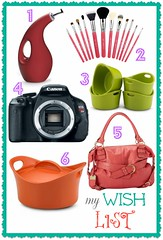 Thumbnail image for Wish List