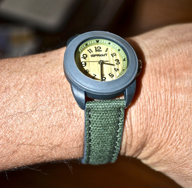 eco friendly watch