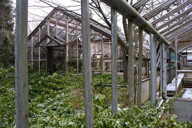 Greenhouse with envy