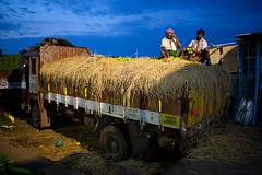 Workers resting in Koyambedu Market