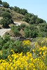 Kreta 2009-1 134
