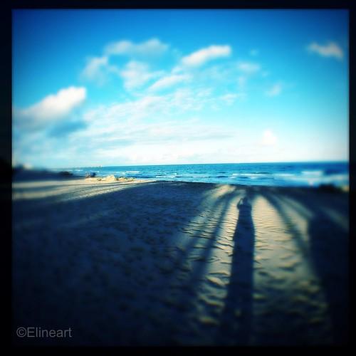 59:365 Shadow Selfie by elineart