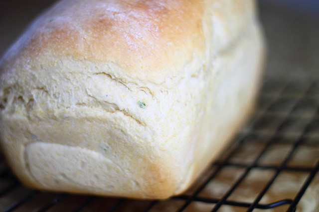 Jalapeno Cheddar Cornbread Loaf Recipe