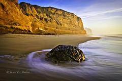 Pacific Coast Rinse