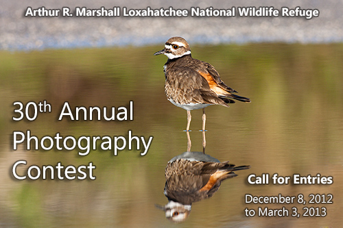 30th Annual Photography Contest
