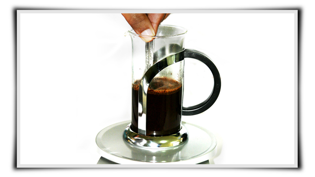 Kopi Luwak French Press 03