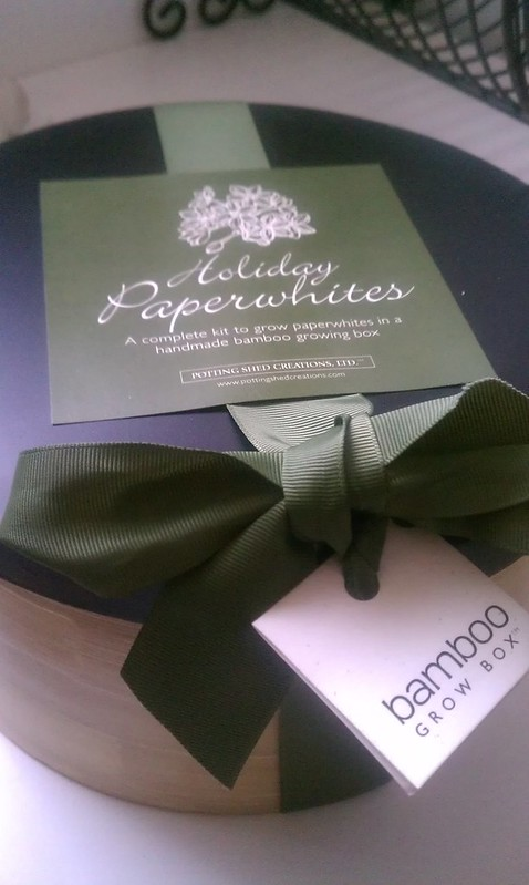Paperwhite Giftbox