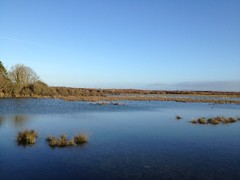 blue turlough