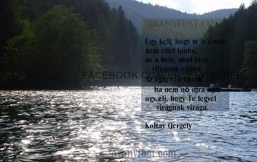 Gyilkos-tó, Koltay Gergely: Kell még egy szó idézet