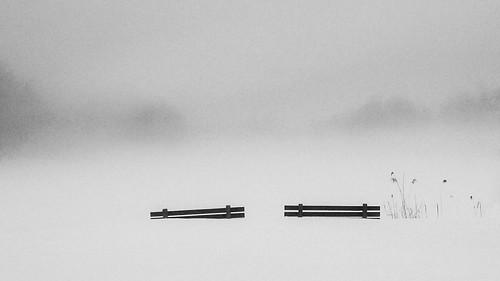 IMAG0782 by Dan_Gaedeke