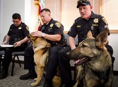 street dog(0.0), conformation show(0.0), animal(1.0), law enforcement(1.0), dog(1.0), pet(1.0), police(1.0), police dog(1.0),