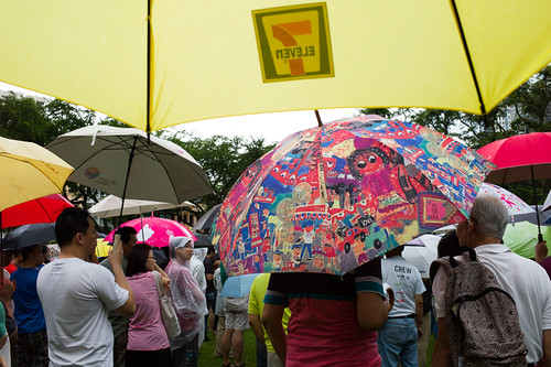 Rain or shine, the protest goes on amidst a dazzling display of different umbrella designs.