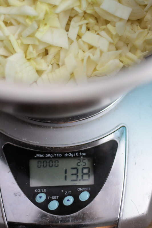 Whats the Salt Ratio for making Sauerkraut? Cabbage