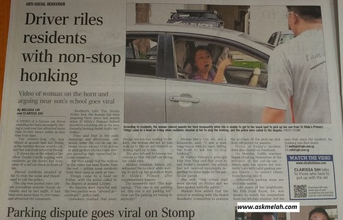 ugly singaporean woman driver riles residents with non-stop honking