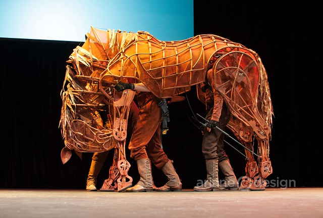 WarHorse at Broadway Across Canada-8