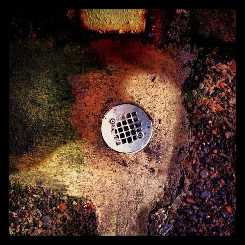 drain by Nature Morte