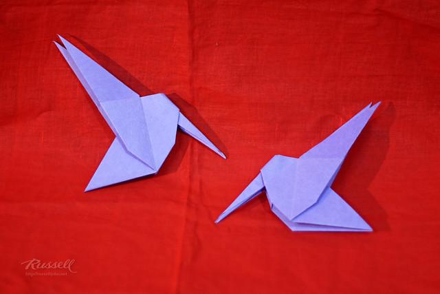 origami hummingbird flickr photo sharing