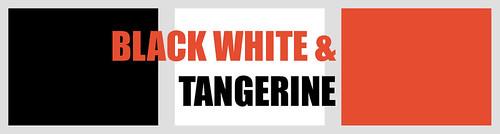 Colour Palette - Tangerine