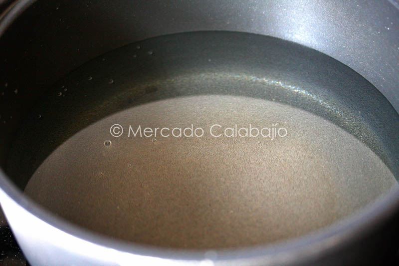 TORRIJAS DE AGUA-4