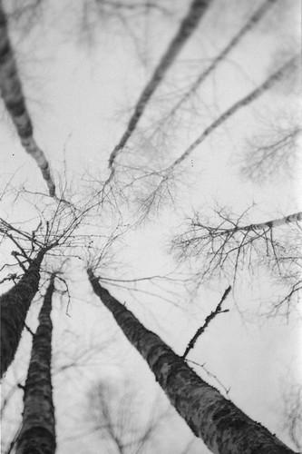 04 by Vitaliy Kot