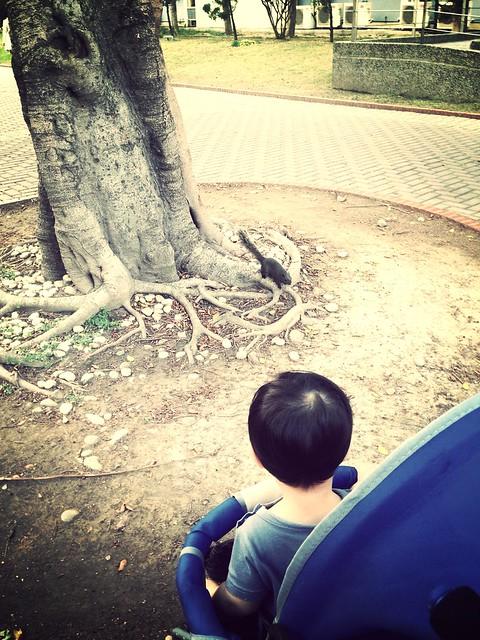89 第一次媽媽推我去逛公園