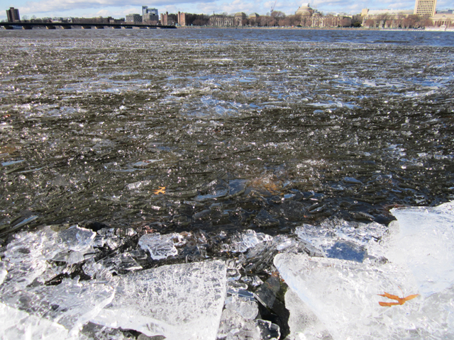 Fresh Eye Friday: Beached Ice on the Charles