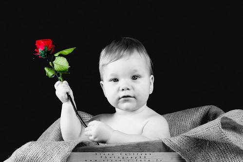 [フリー画像素材] 人物, 子供 - 赤ちゃん, 人物 - 花・植物, 薔薇・バラ ID:201303310400
