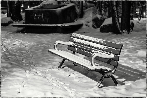 Winter's Bench