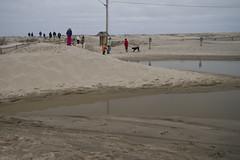 20130310 - Nauset Beach Hike