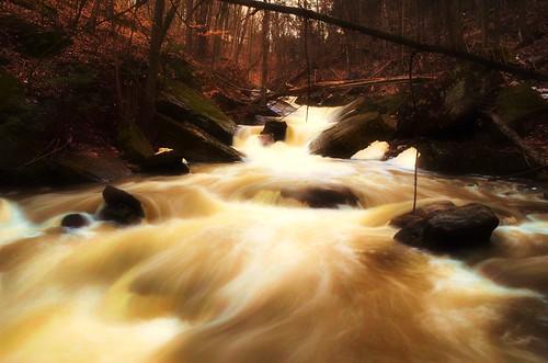 Spring Flow [Explored]