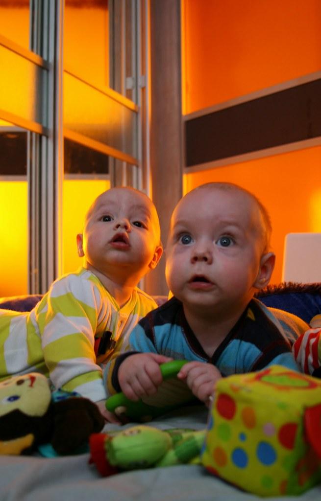 Лука и Олег глядят ввысь